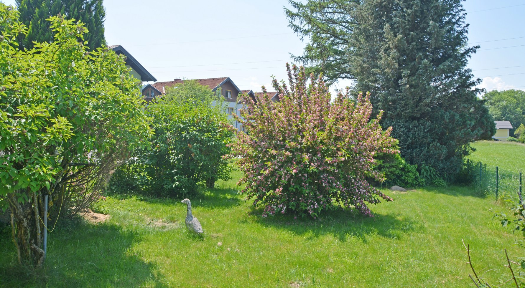 Property in 5301 Eugendorf bei Salzburg: What a blessing ... Living and working AT HOME! - picture 1