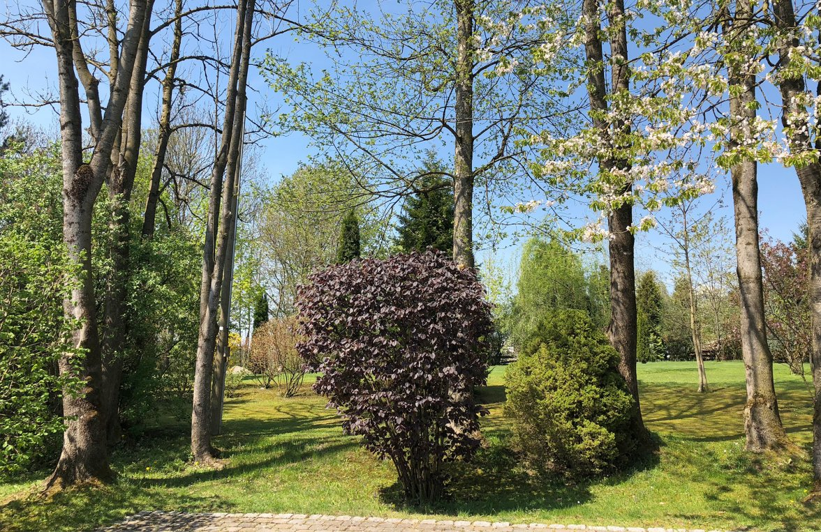 Property in 83043 Bad Aibling: Property with outbuildings and large park  - picture 3