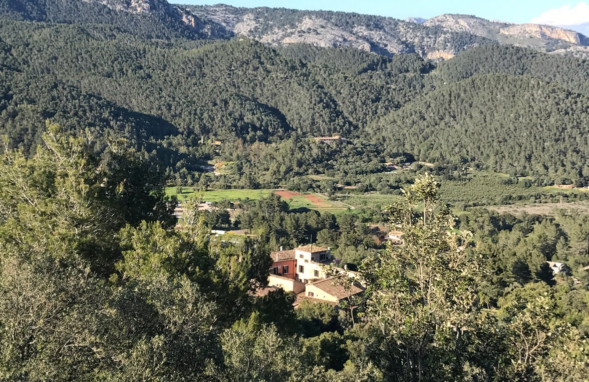 Property in 07190 Esporles - Palma de Mallorca: Historic finca. Secluded location at the foot of the Tramuntaner mountains - picture 4