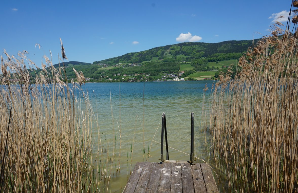Property in 5310 Mondsee: Your lake retreat - Boathouse, annex and a perfect villa with lake view! - picture 8