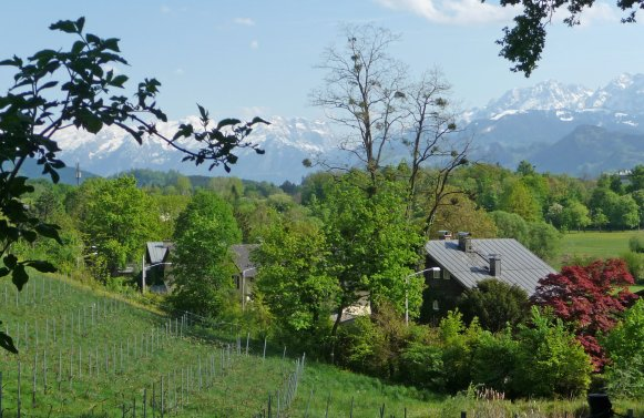 Property in 5020 Salzburg: 400 year old farmstead with one hectar land in the middle of the festival district